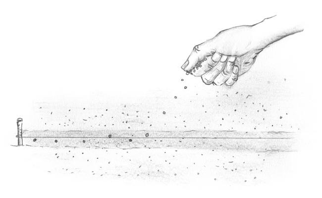 Illustration: Dympna Driscoll