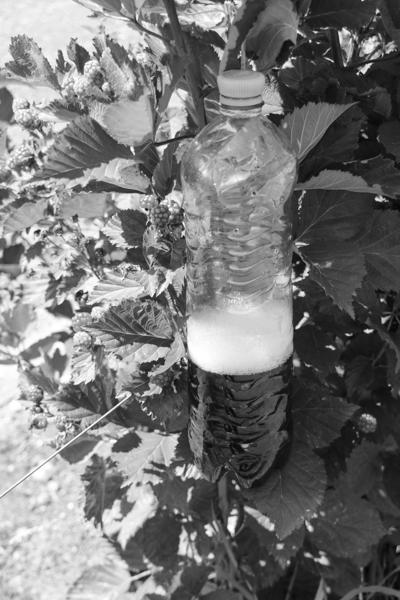 Die KEF-Flasche sollte im Schatten aufgehängt werden